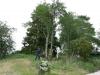 """Keijo och Dennis fäller det första trädet inför byggandet av rc-banan, som i framtiden heter """"Hallon Raceway"""". 060626"""