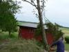 Timber!!! 060626